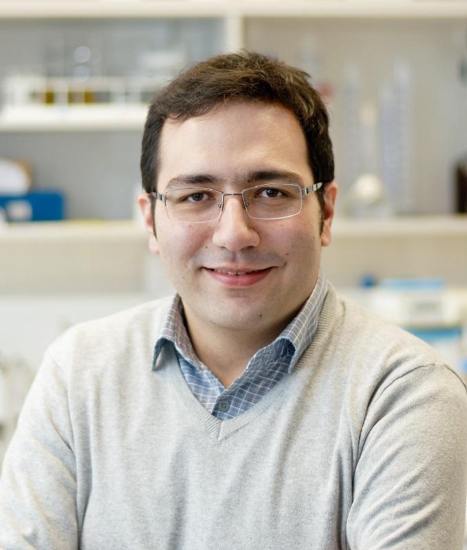 Dr. Ali Talimian